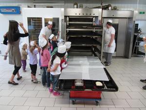 Rotatief oven en ringbuisoven